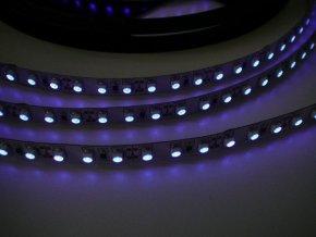 UV LED pásek 9,6W/m, 1m