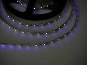 UV LED pásek 4,8W/m, 1m