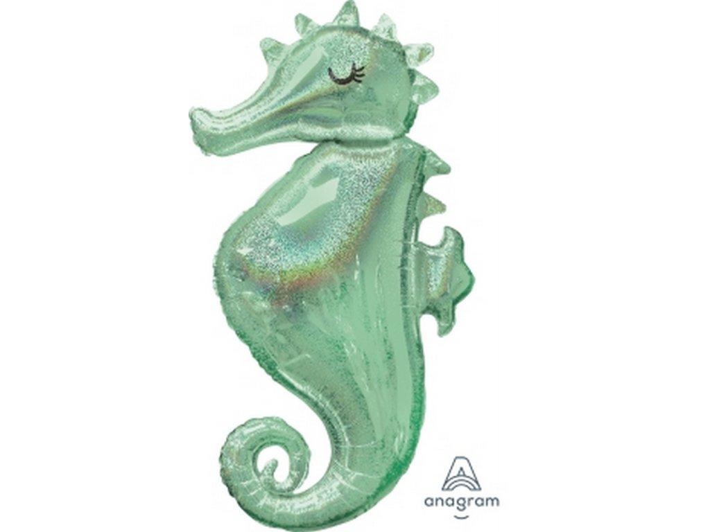 Animals Magical seahorse 37800