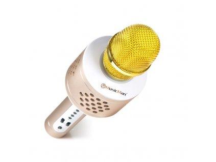 Technaxx BT-X35 PRO Bluetooth karaoke mikrofon, zlato-stříbrná