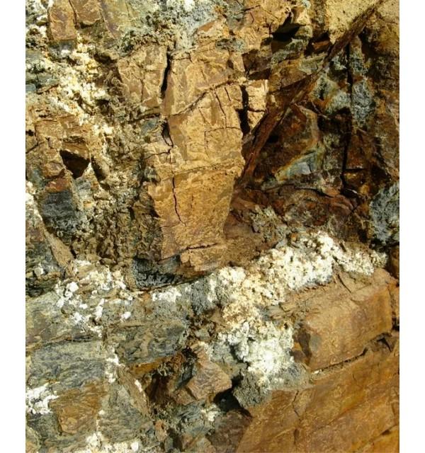 stone-maslo-600x640