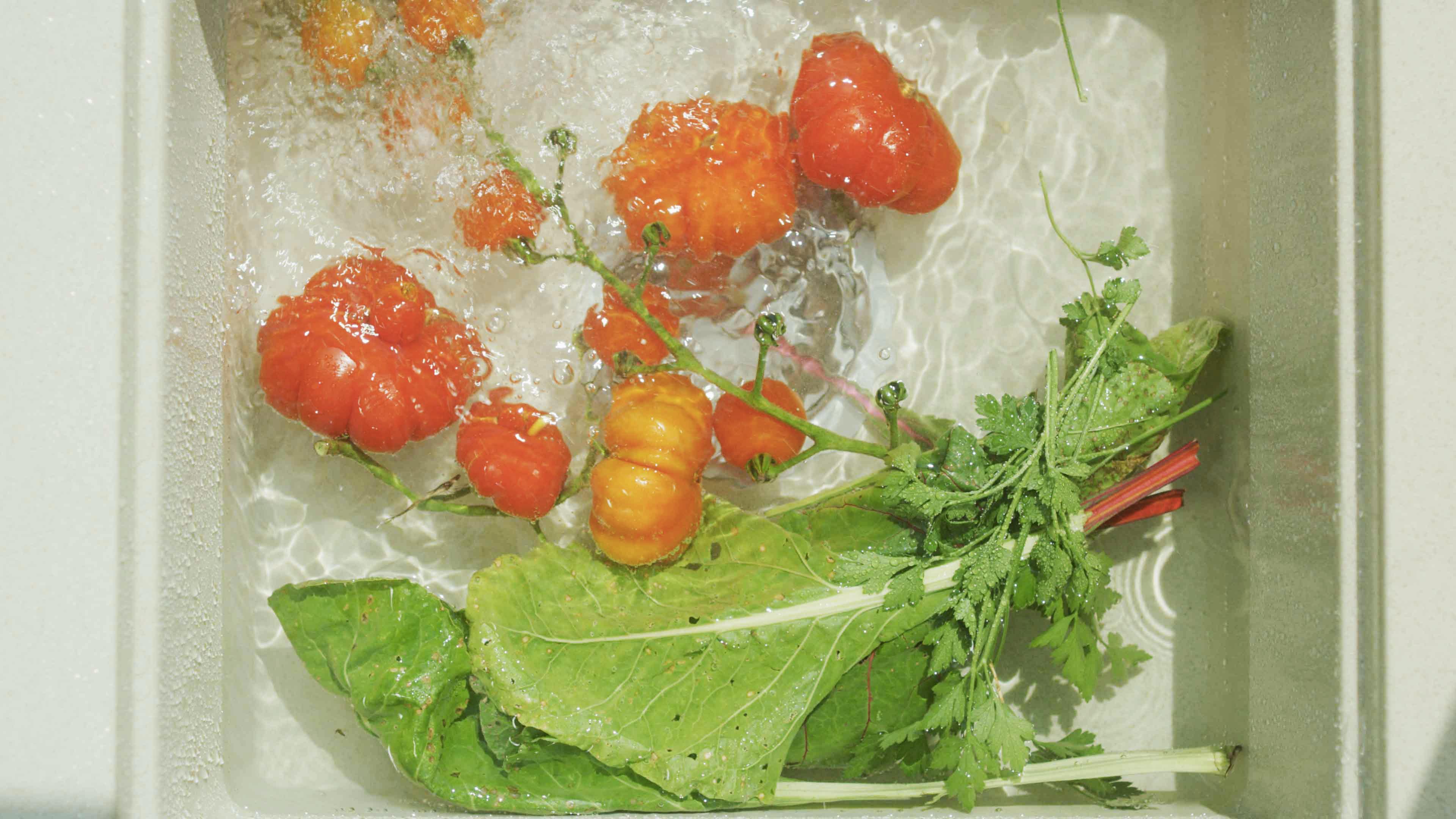 Deset důvodů pro samopěstování zeleniny a bylin