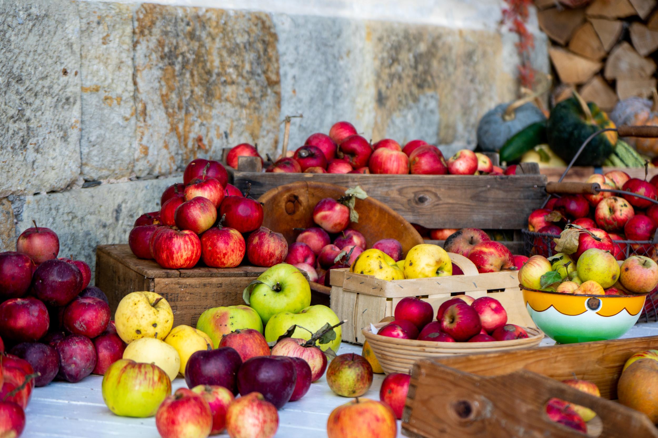 O zachování původních odrůd ovocných stromů s profi školkařem