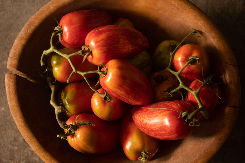 Balkon: nebojte se pěstovat sladká rajčata