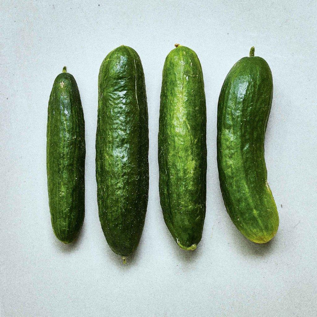 SZ0196 Okurka salátová Beth Alphe web