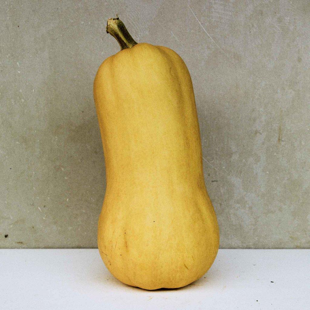 1waltham butternut musk pumpkin jpg