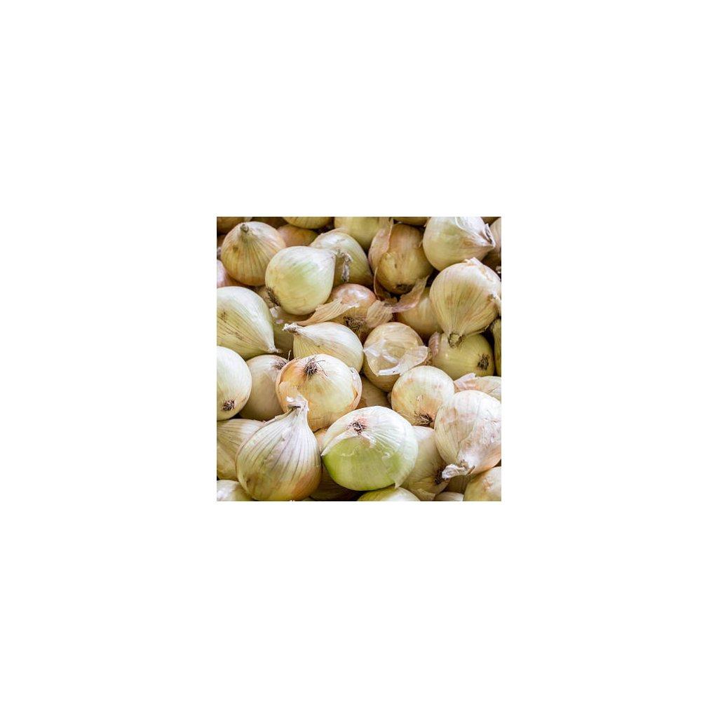Cibule sladká Walla Walla1(1)