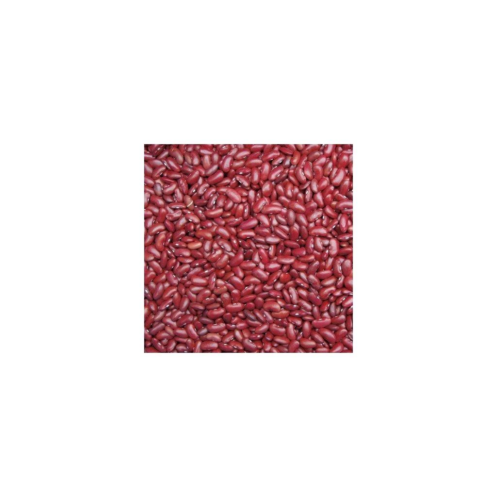 fazol canadian wonder 600 (1)
