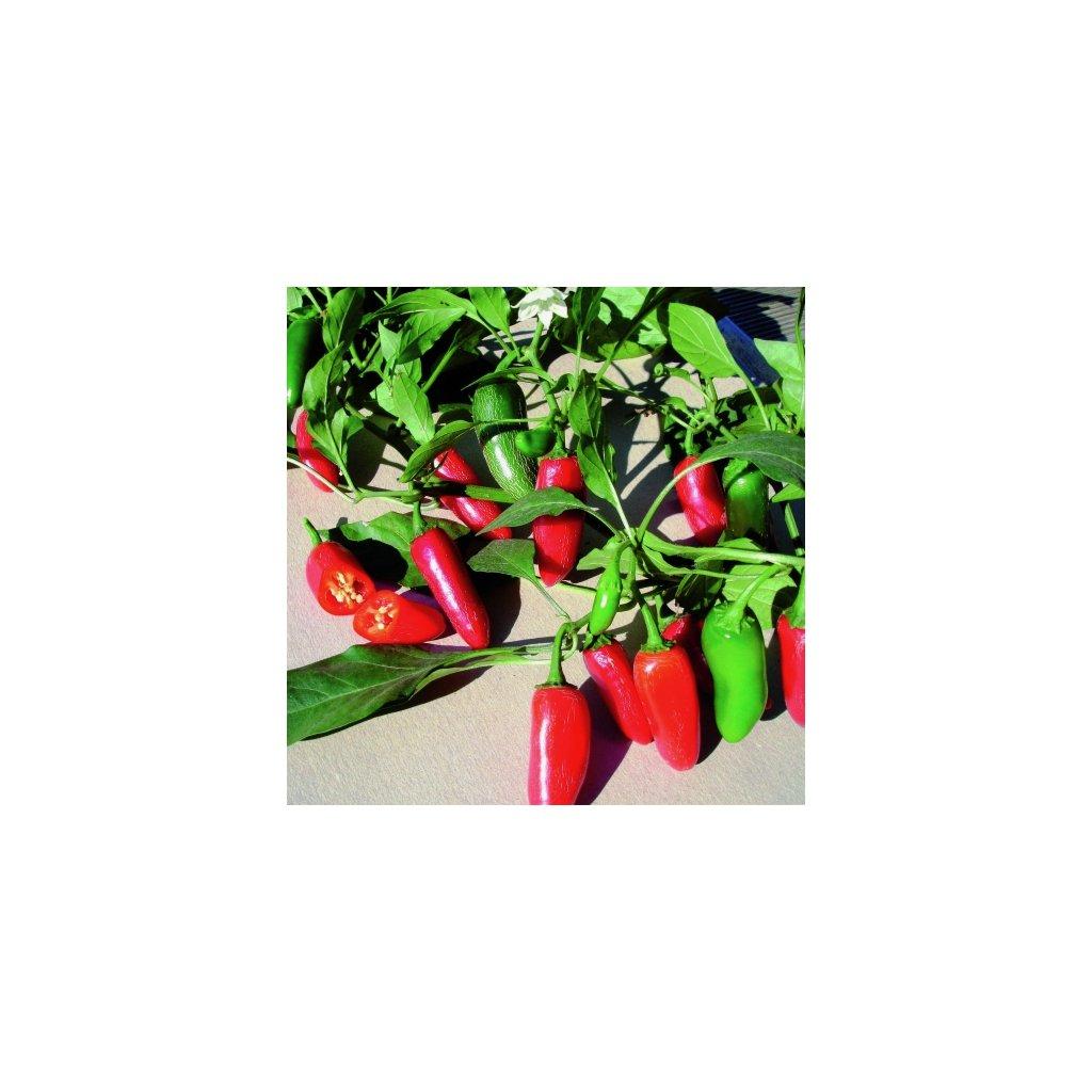 Paprika Jalapeňo