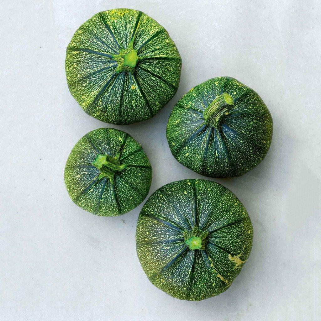 Cuketa zelená Tondo di piacenza