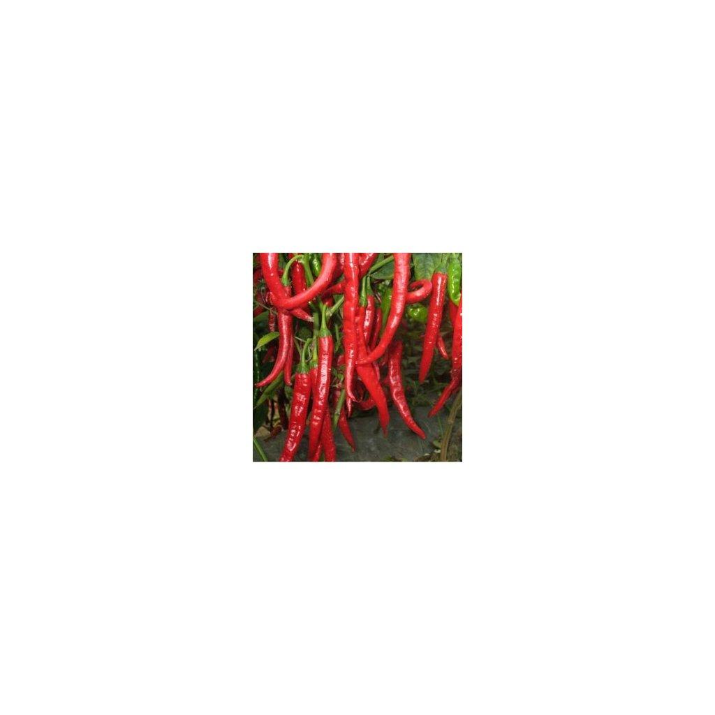 chilli paprika de caine
