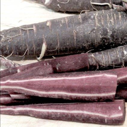 Černá španělská mrkev