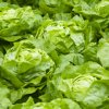 salat detenicka atrakce