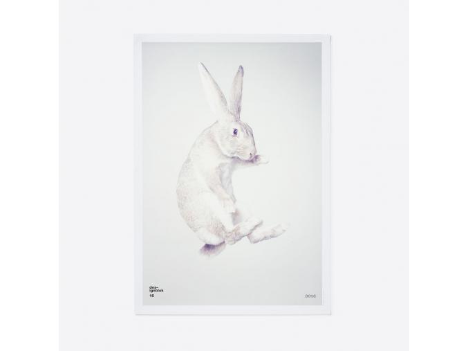 plakát zajíc