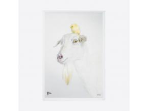 plakát koza