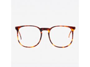Brýle 261 Linea Moda