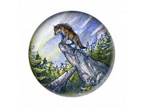 Vlci skala