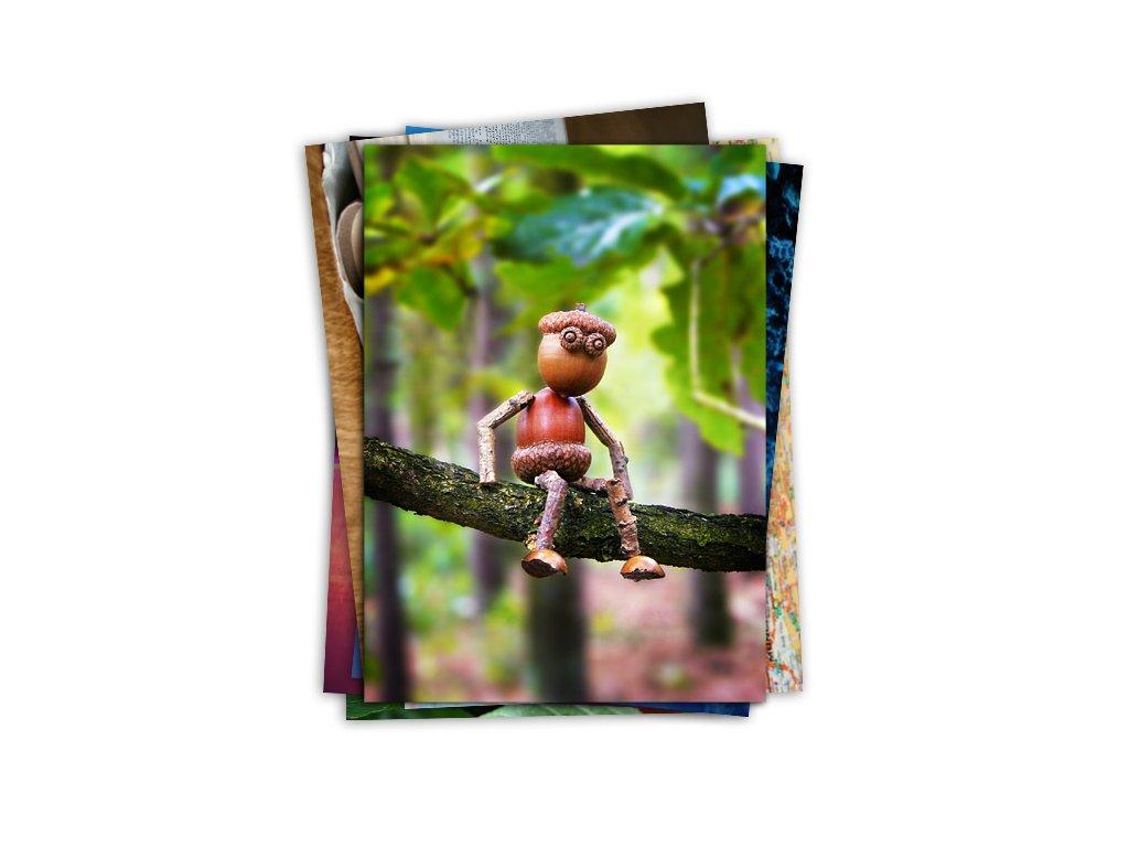 Výběr pohlednic s dubánky