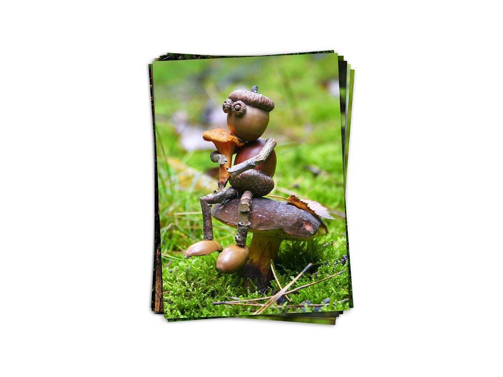 Podzimní dubánčí pohlednice s houbami