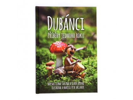 Kniha Dubánci - příběhy jednoho roku