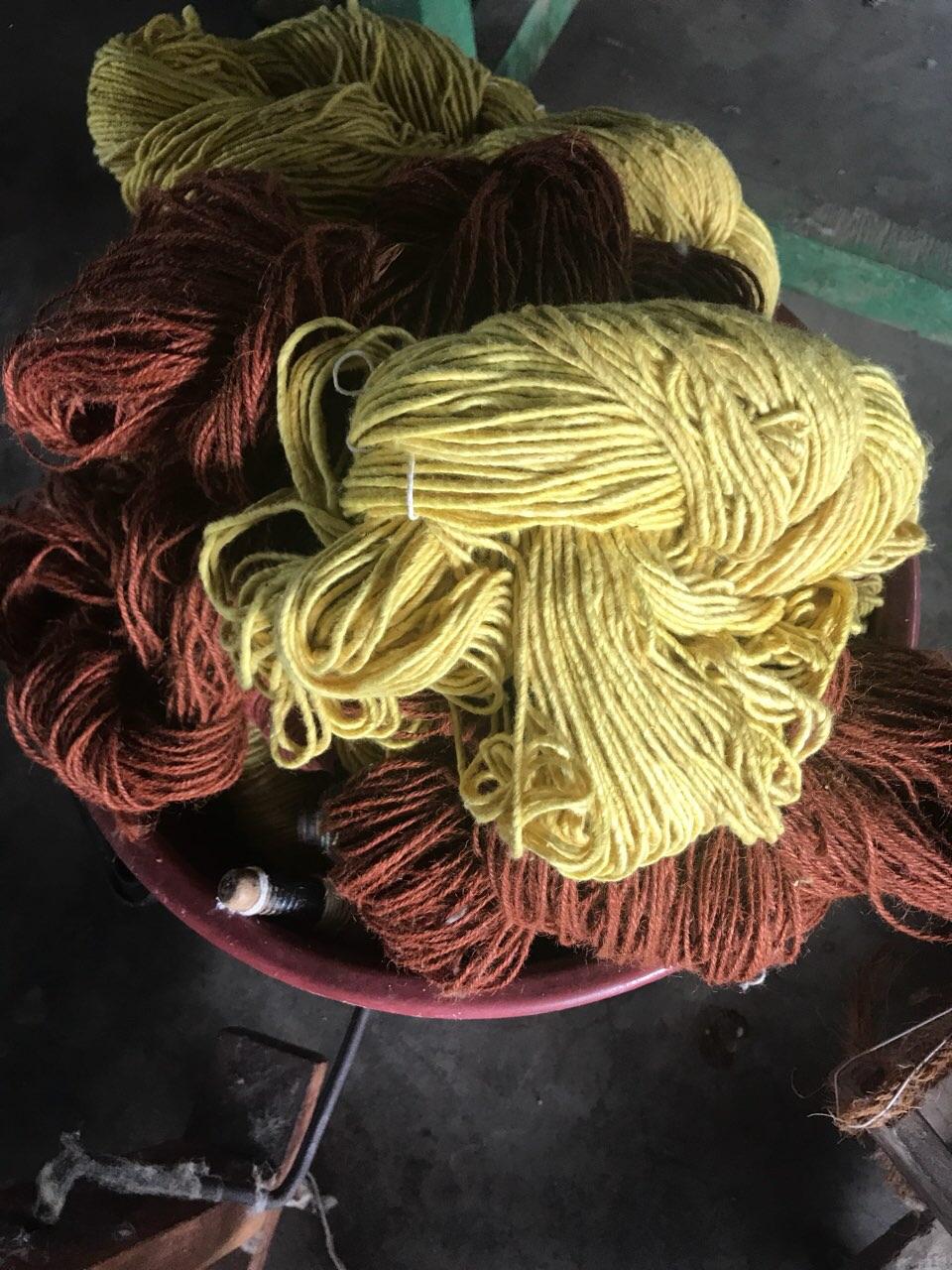 Bavlna připrávená ke tkaní