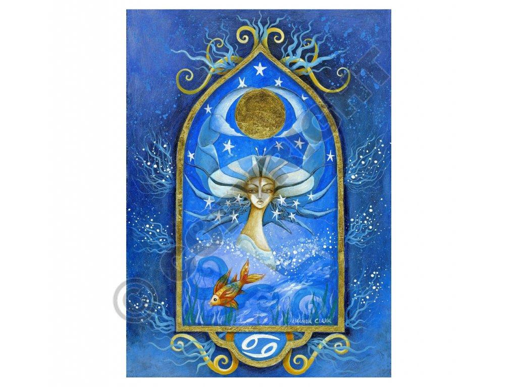 mysticke prani 25