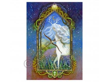 mysticke prani 31