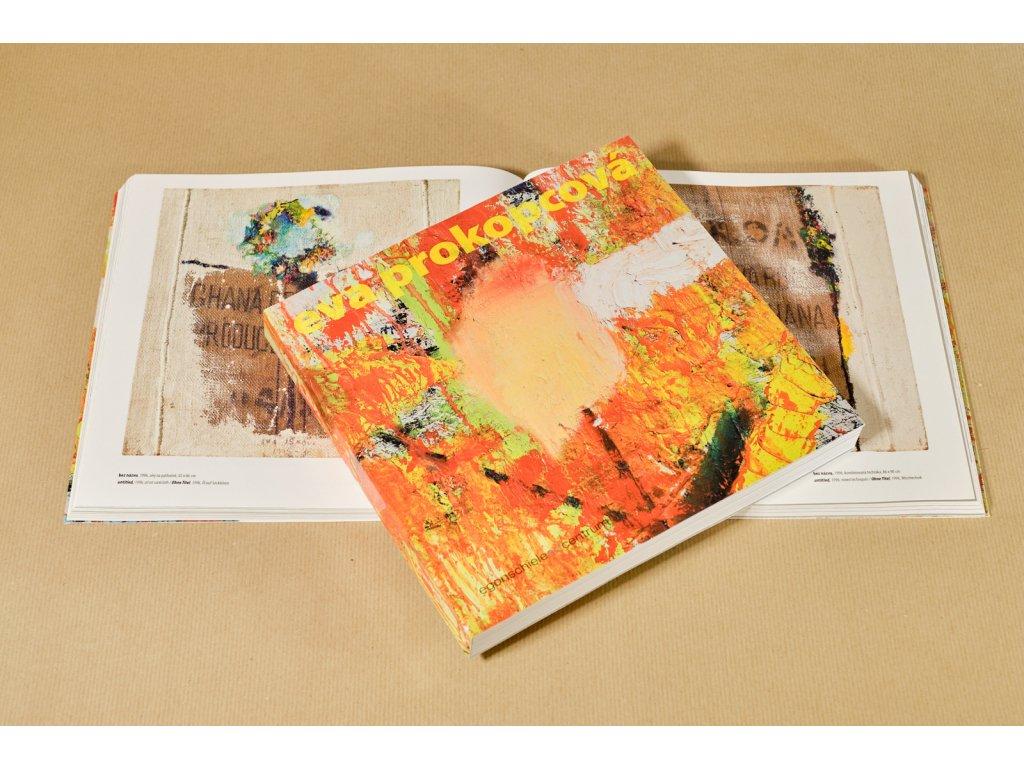 Katalog ProkopcovaEva DSF1716