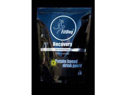FD Recovery P copy
