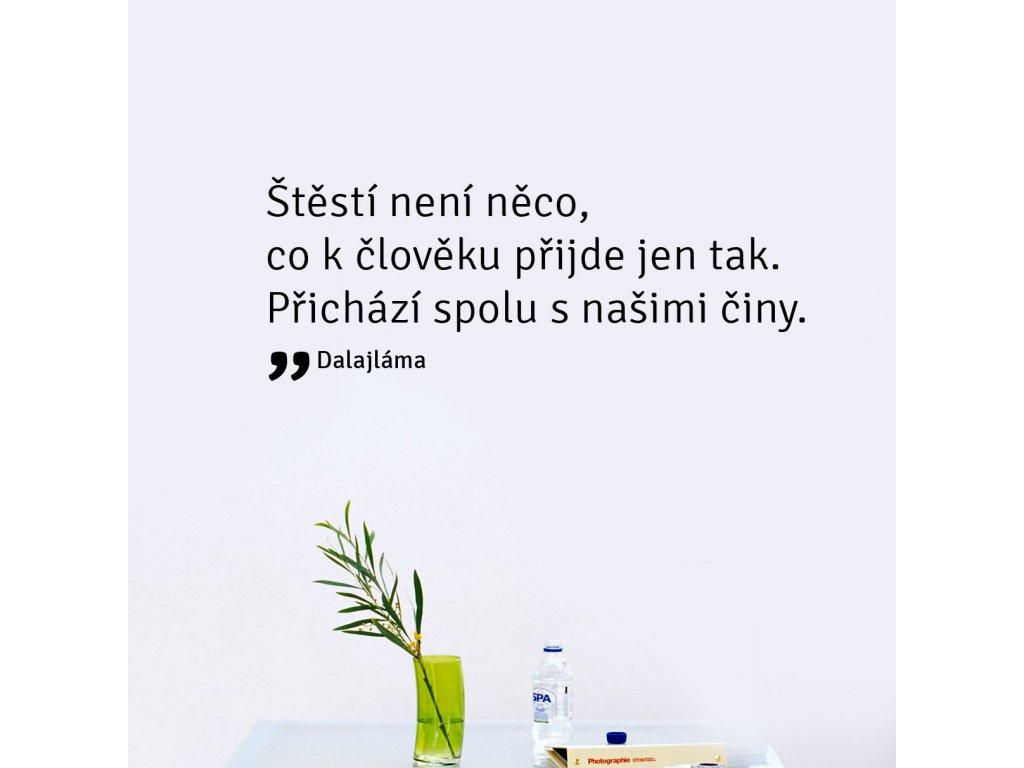 textova samolepka na zdi stesti citat dalaljama