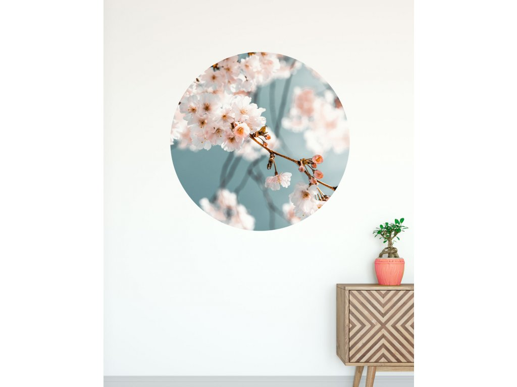 dekorace na stenu rozkvetla tresen samolepici kruh eko