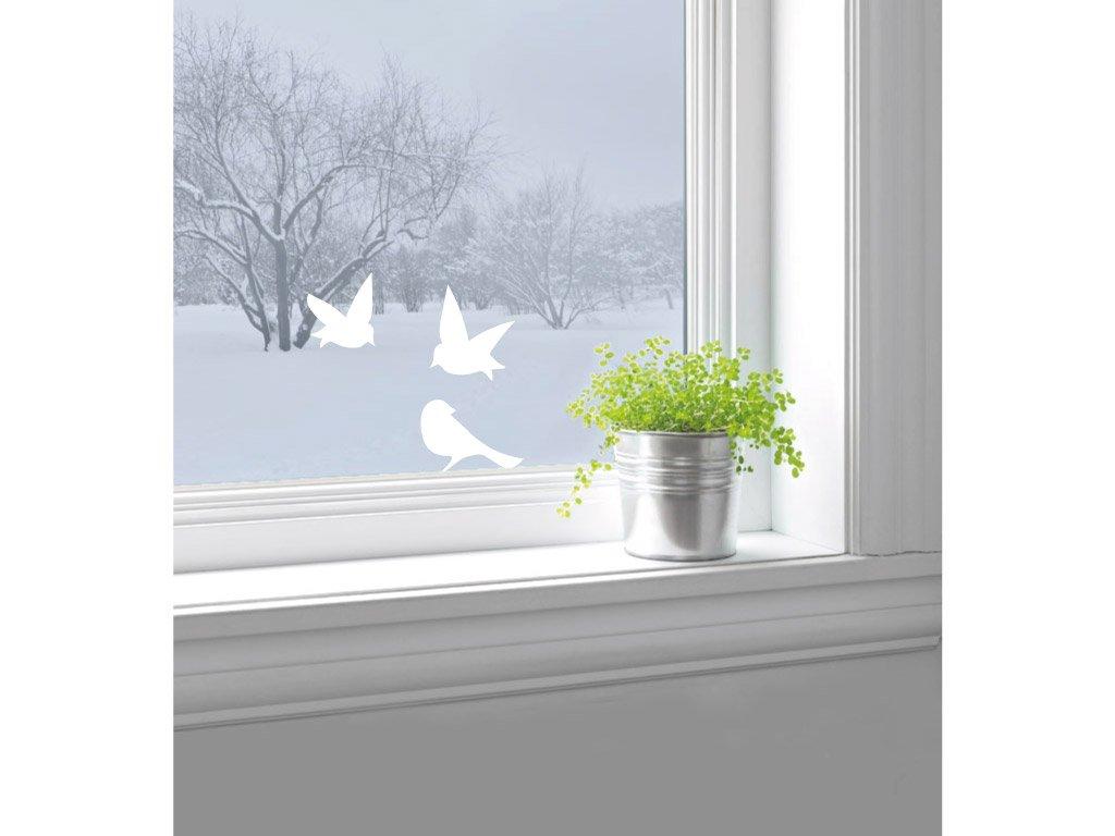 tri ptacci za oknem