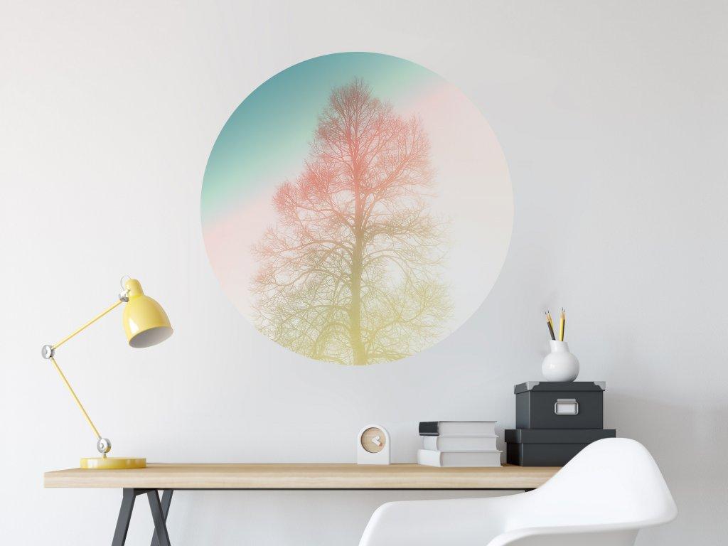 designova sanolepka na zed kruh spici strom