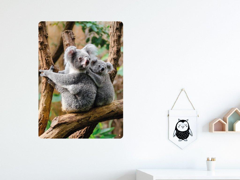 koala a mlade samolepka na zed interier