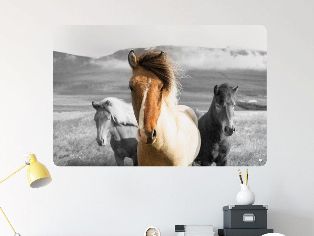 kone samlepka na zed interier