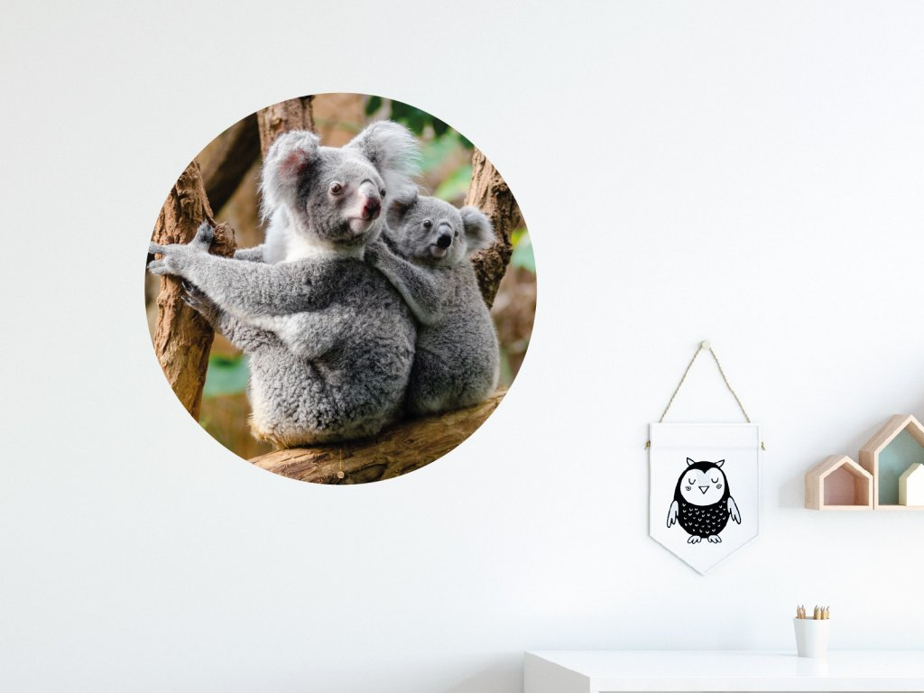 koala a mlade samolepka na zed kruhova interier