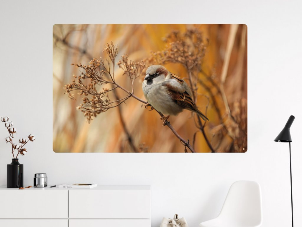 ptacek na vetvi plakat na zed internet