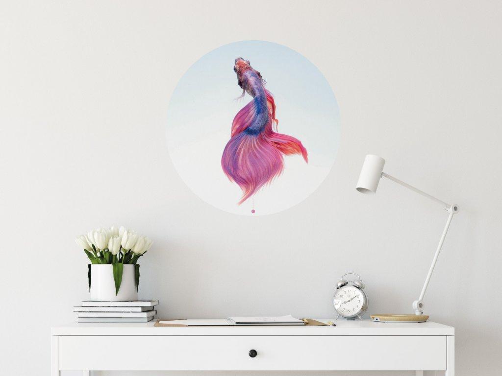 kouzelna rybka samolepici kruh na zed interier