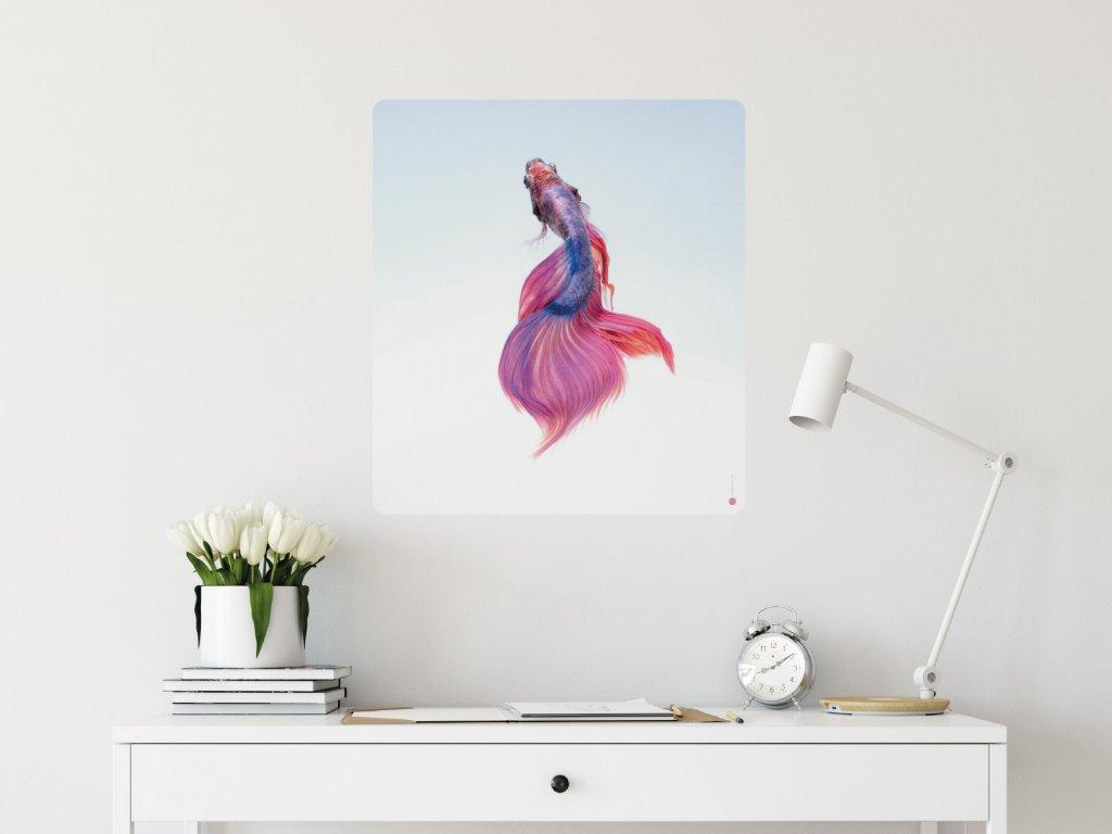 kouzelna rybka plakat samolepici interier
