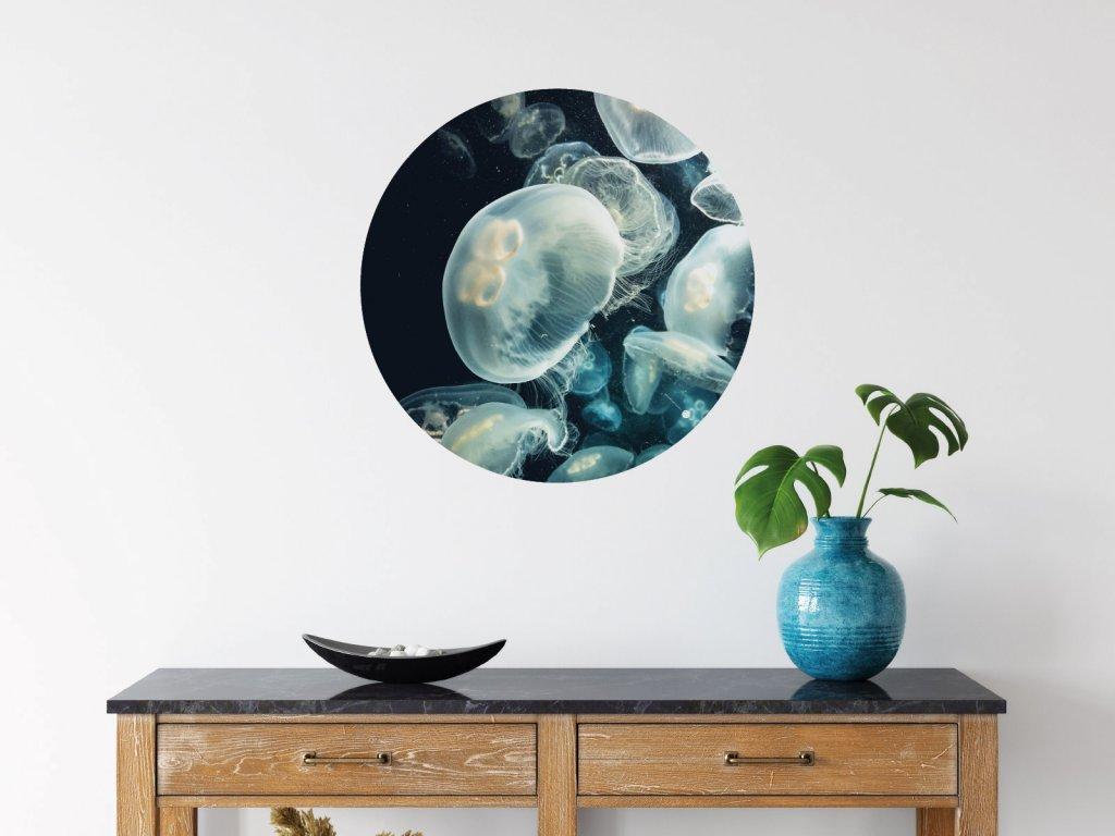 meduzy ve tme samolepici kruh na zed interier