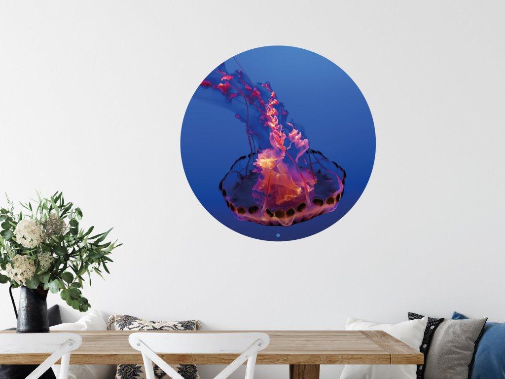 meduza ohen samolepka na zed interier