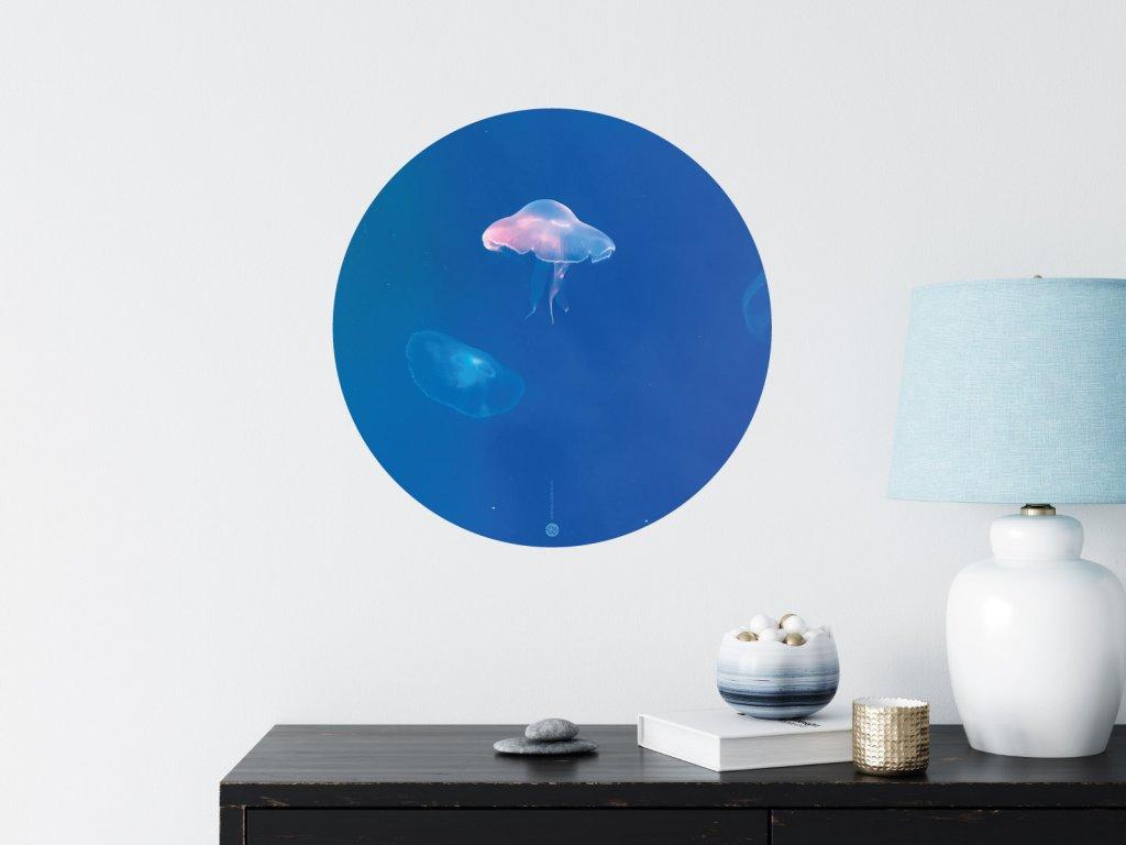 svitici meduza samolepka kruh premistitelna interier