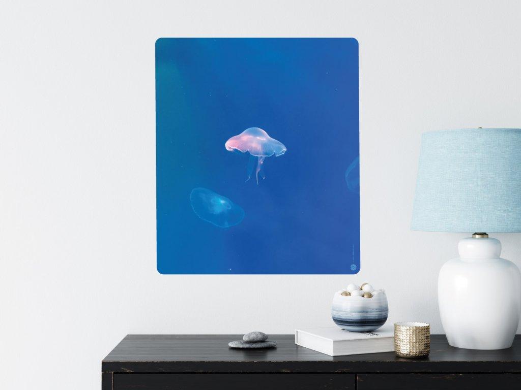 svitici meduza plakat samolepici interier