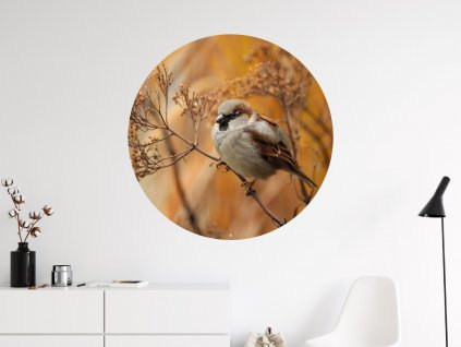 ptacek na vetvi samolepka kruh na zed interier