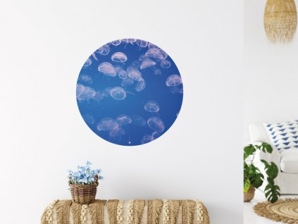 hejno meduz samolepici premistitelna samolepka kruh interier
