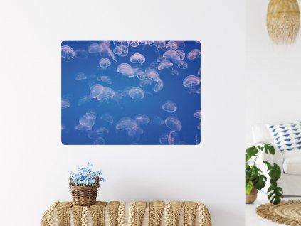 hejno meduz samolepici premistitelna samolepka plakat interier