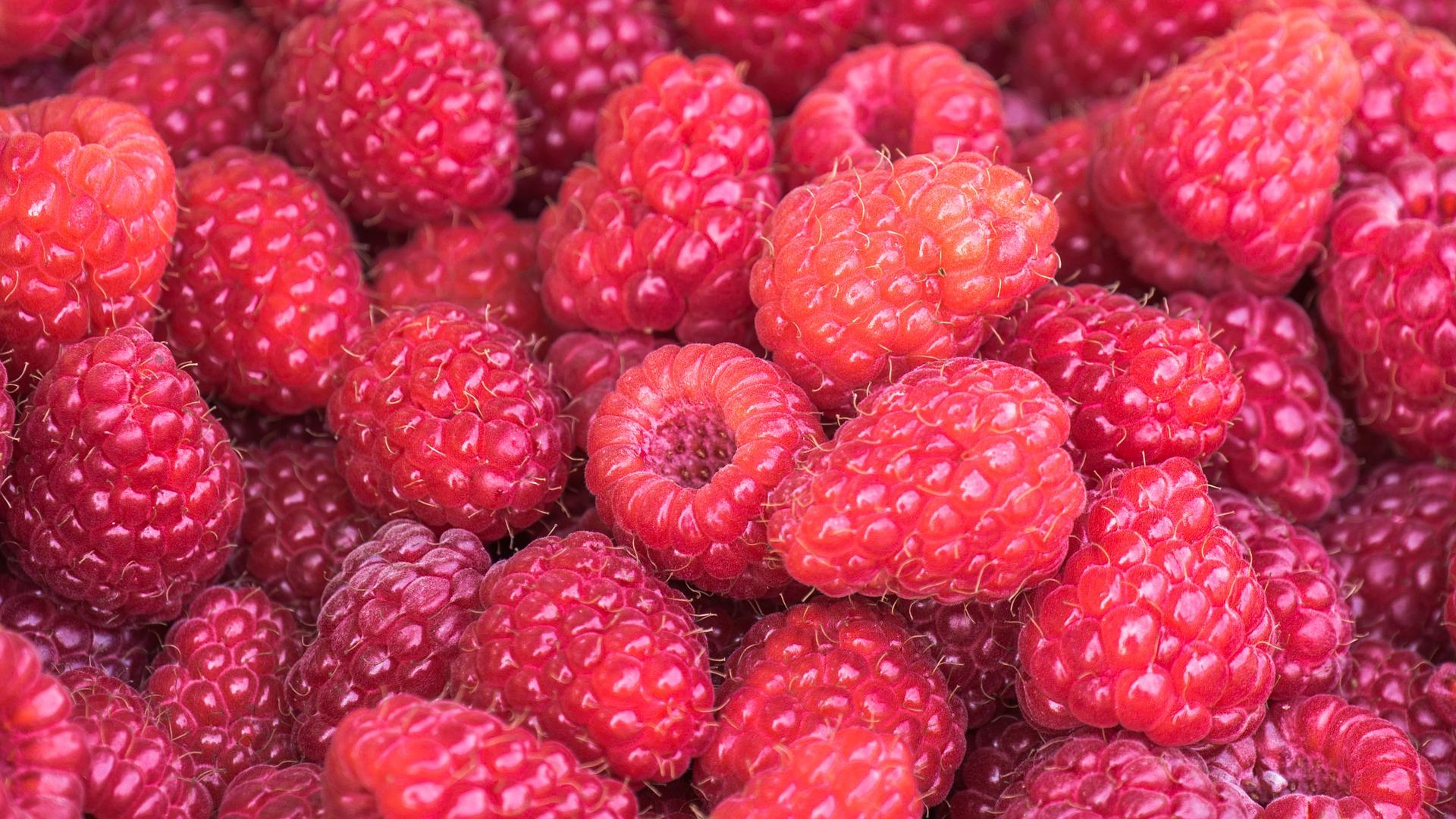 raspberries-3583005_1920