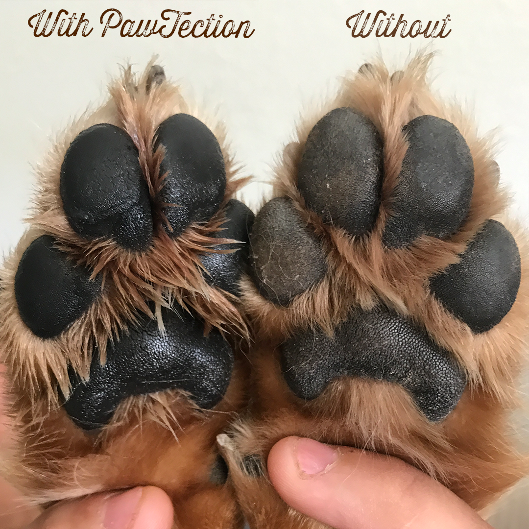 tlapky paw tection