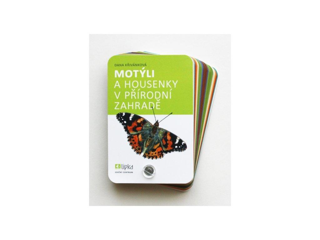 Motýli a housenky v přírodě