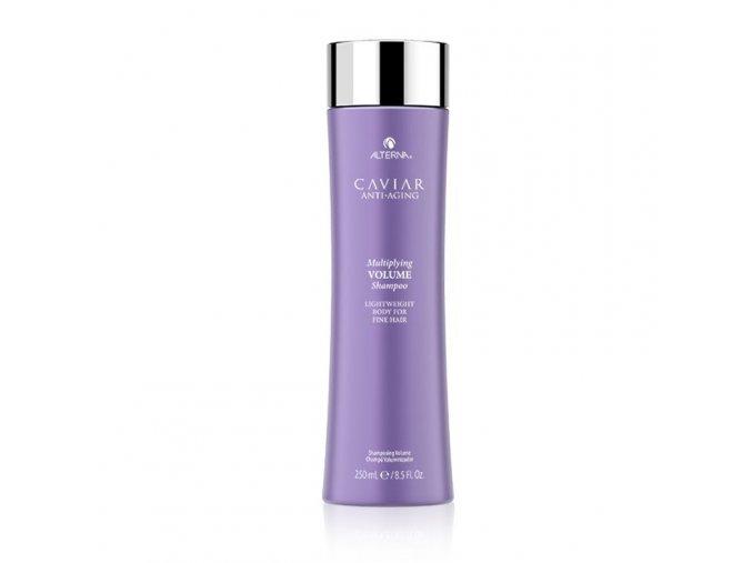alterna volume shampoo